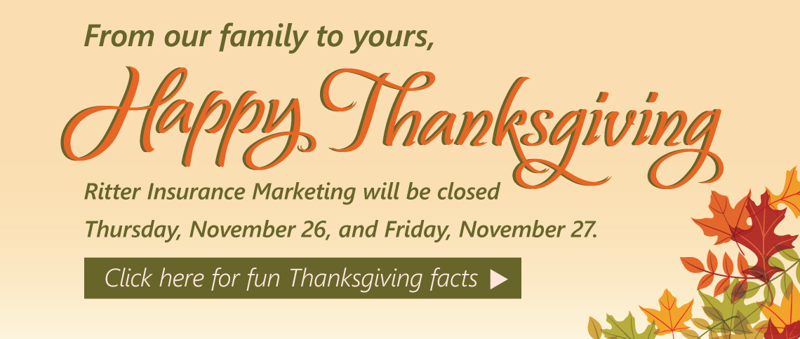 RIM_2015_Thanksgiving banner